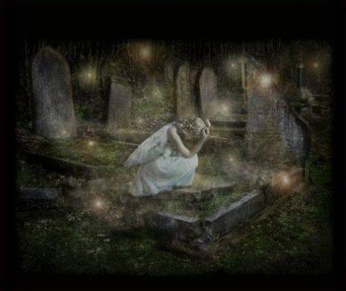 """Résultat de recherche d'images pour """"belles images de mourir un jour"""""""